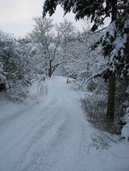 Jan 10, snow 3