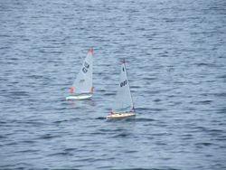 Halfpint Sailing