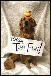 Parker shows off Team Fun on PDXdog.com
