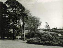 view from the Rowdens 1938