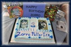 Zorro B-day Cake