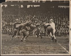 1933 New York Giants