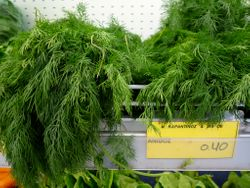 Dill, find it also in Greek Tzatziki
