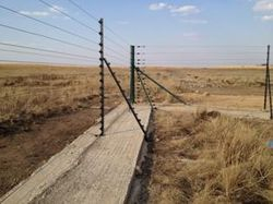 Aprin Electric Fence with concrete underneath
