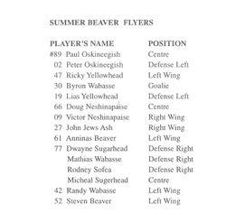 Summer Beaver Flyers