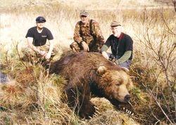 Darryl's Bear