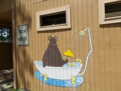 Bathhouse Bear
