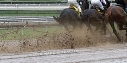 Splashing Through the Mud