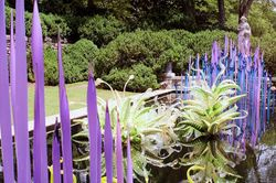 Chihuly in Museum Garden
