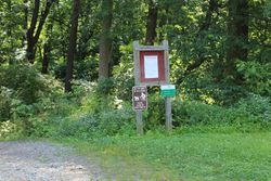 Pennypack Trail/ Lorimer Park
