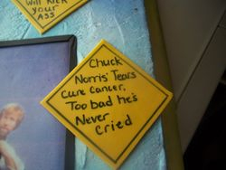 Chuck Norris (sayings)