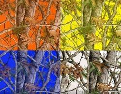 WTP845 Vista Micro Colors
