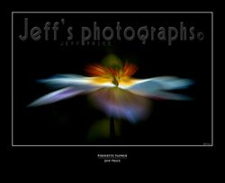 Pirouette Flower