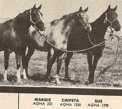 Margie, Chipeta, Sue