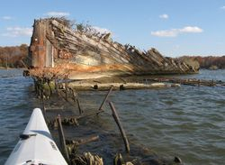 Mallows Bay - Ghost Fleet on Potomac