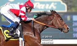 Songbird wins the Las Virgenes