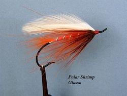 Polar Shrimp Glasso