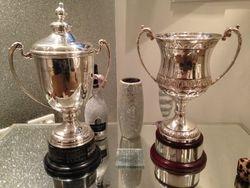 Both Trophies on Display