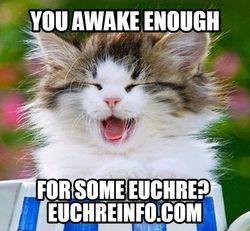 You awake enough for some Euchre?