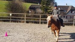 Horsemanship Dressur