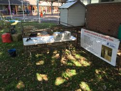 Raymond Terrace Public School Careers Day 2015