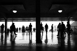 Grandstand Silhouettes