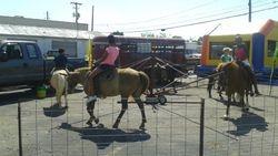 Ponies in Action