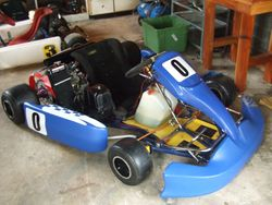 Mike Limmers 2009-2010 Kart