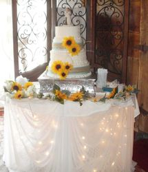 Wedding Cake on our lighted table