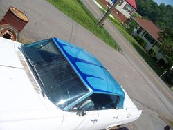 MetalFlaked/ Kandied roof