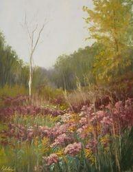 Butterfly Marsh