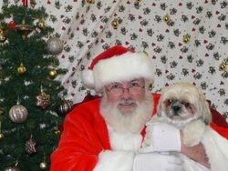 Willow and Santa