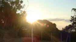 Surgimiento solar
