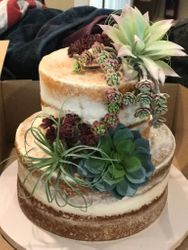 Naked Cake with succulants