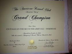 AKC GRAND CHAMPION