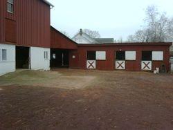 Courtyard Stalls