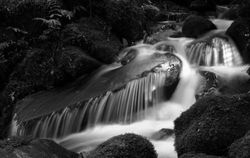 Cement Creek Falls (BW)