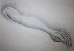Foreshortened Arm