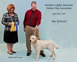 Boaz winners dog