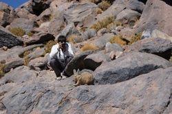 Altiplano, Bolivia 41