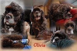 Olivia needs a haircut...lol :)