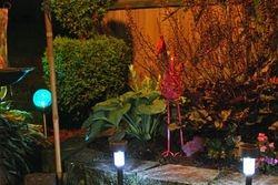 Lindys flower garden nights 5