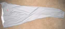 Colby Rasmus 2007 Arizona Fall League Game Used Pants
