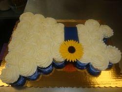 $3/cupcake plus $5 belt