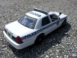 MIAMI POLICE DEPARTMENT, FL