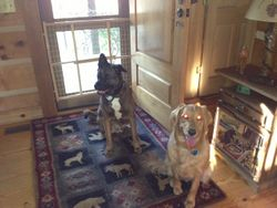 Gus and Ellie