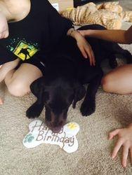 Jake's Birthday