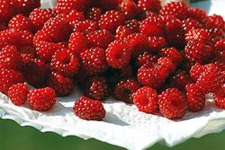 Plate of raspberries close up