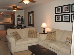 Newly renovated,designer furnished