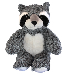 Bandit our Raccoon